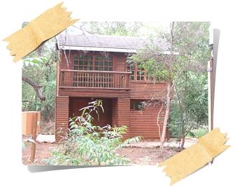 log-cabin