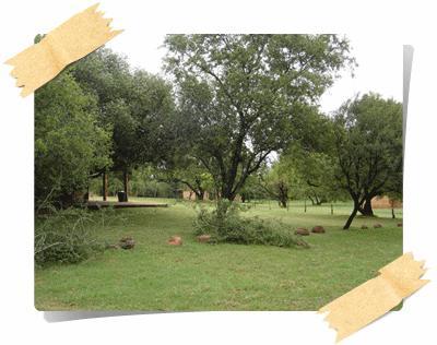 main-campsite